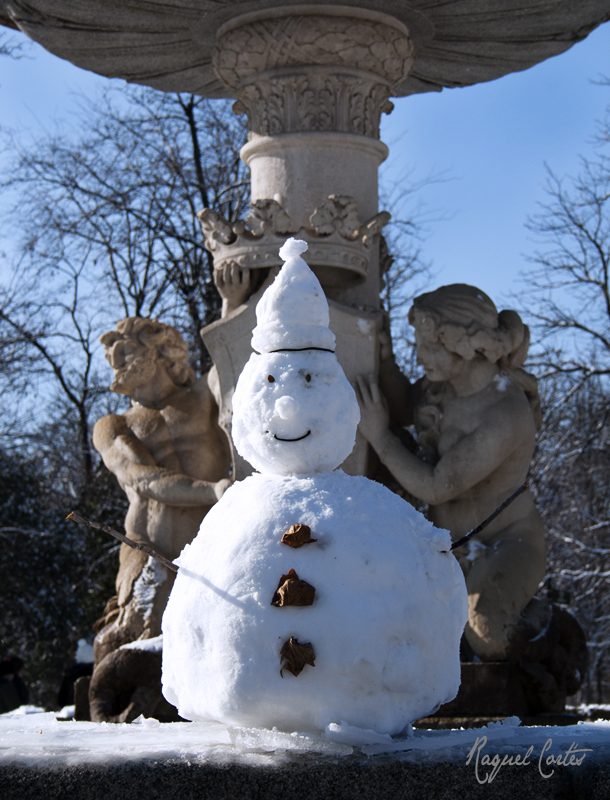 The Crowned Snowman