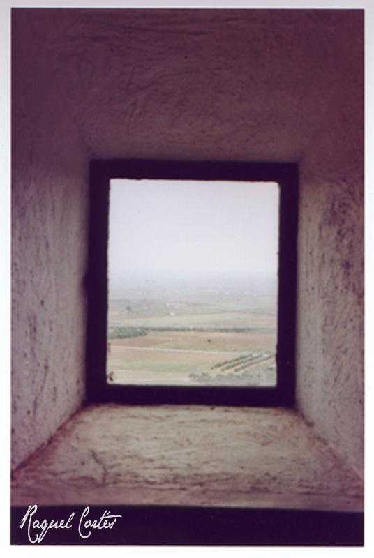 Look outside the window