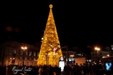 Puerta del Sol - Christmas 2014