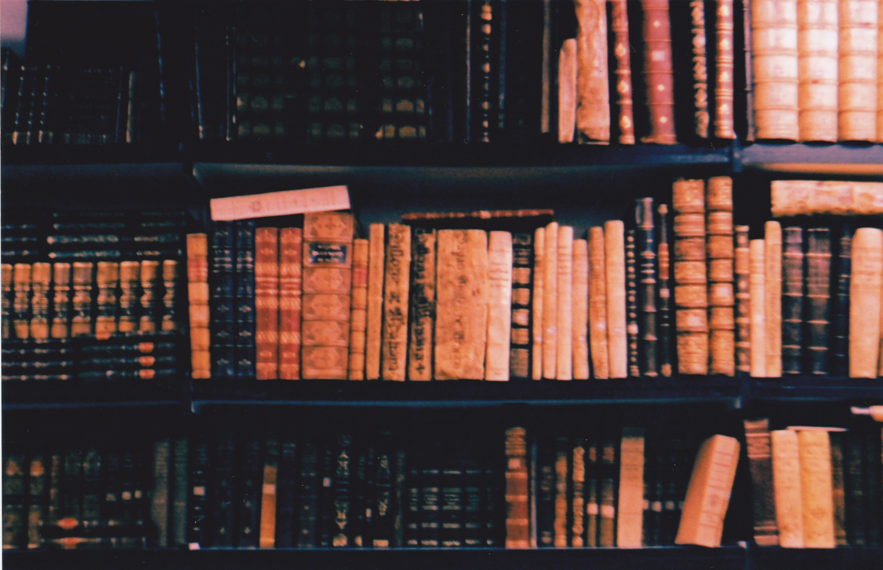 raquelcortes_books -3