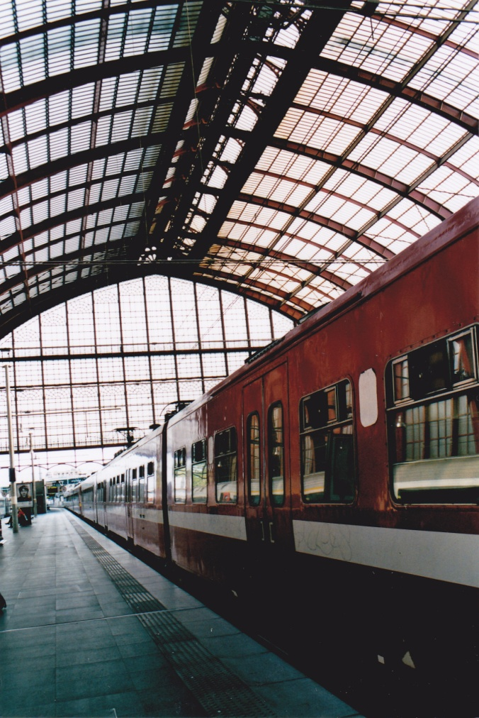 raquelcortes_train-2