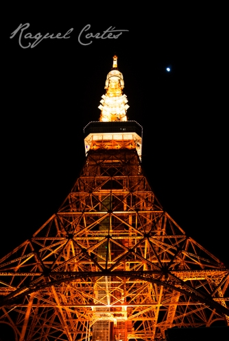 Tokyo Tower and Moon